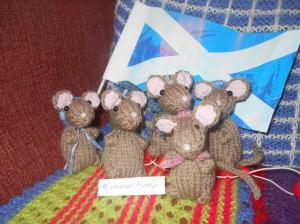 the army of voles hoping it does not rain